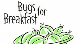 Bugs For Breakfast: Food and Culture
